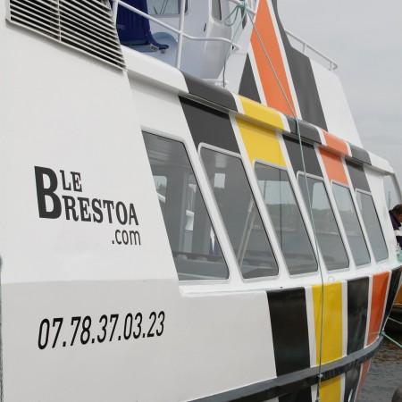 140606-brestoa-moulin-blanc-brest-13
